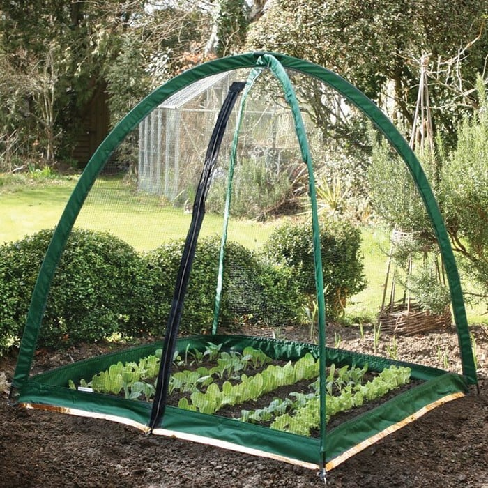 Popadome Crop Protection System 1 2m X 1 2m Harrod