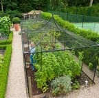 Peak Roof Steel Fruit Cage