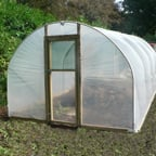 Polytunnel 10ft wide