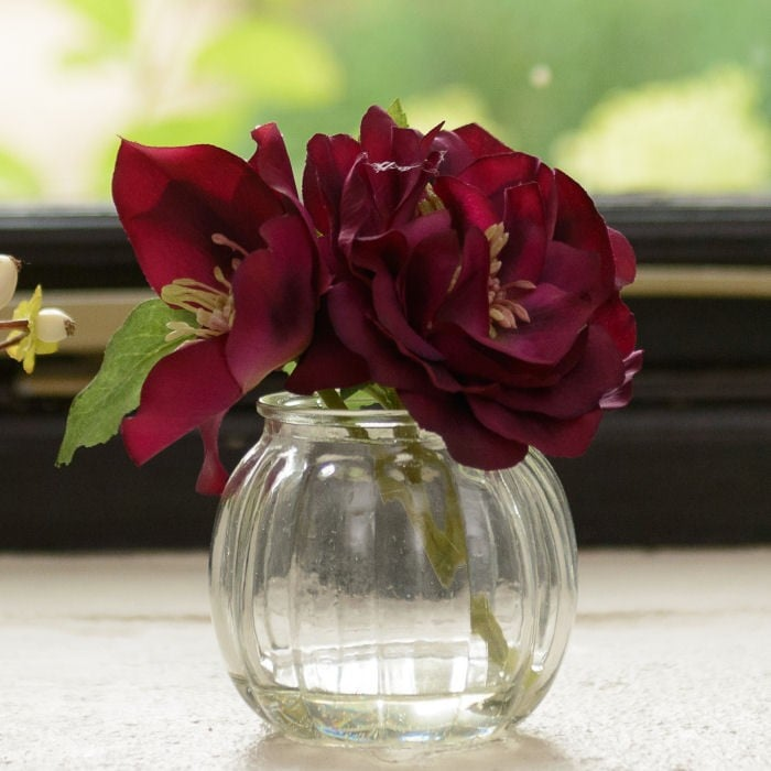 Purple Christmas Rose In Small Vase By Sia Harrod Horticultural