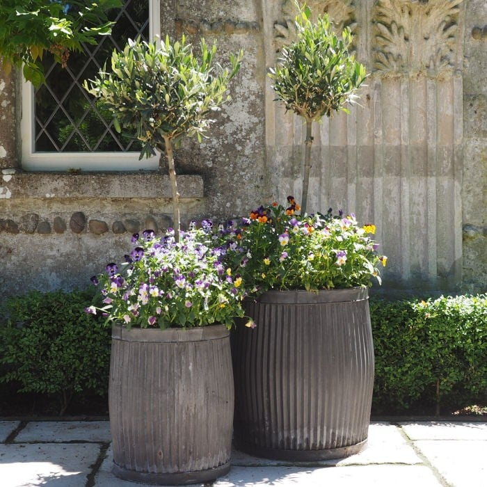 Set of 2 Ribbed Steel Planters - Harrod Horticultural