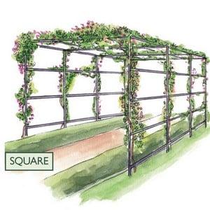 Square Garden Pergolas