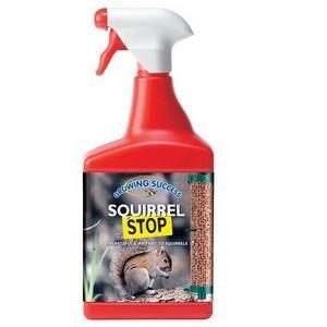Squirrel Stop
