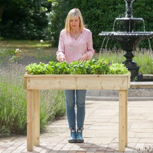 https://www.harrodhorticultural.com/uploads/images/products/Standard-Raised-Bed-Table-1.jpg