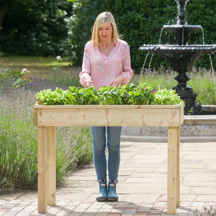 Standard Wooden Raised Bed Tables - Raised Bed Gardening Harrod ...