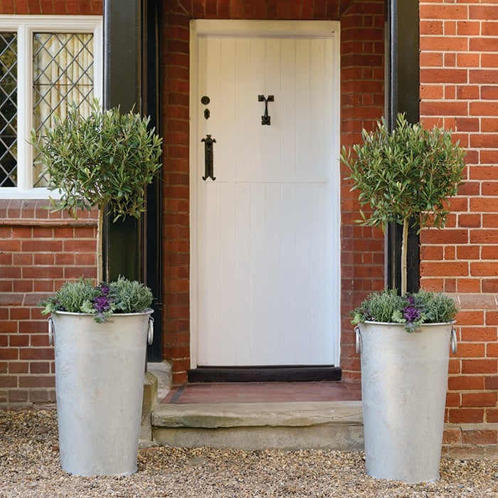 Tall Galvanised Zinc Planters - Harrod Horticultural on chrome planters, iron planters, long rectangular planters, bucket planters, stone planters, window boxes planters, copper finish planters, old planters, tall planters, urn planters, pewter planters, resin planters, large planters, plastic planters, round corrugated planters, corrugated raised planters, aluminum planters, wall mounted planters, stainless steel planters, lead planters,