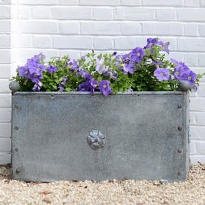 Galvanised Steel Traditional Trough Planter