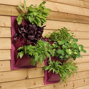 Create A Wall Of Flowers In Vibrant Colours At Eye Level Or A Vertical Salad Or Herb Garden With A Verti-plant Planter. Each Verti Planter Has 3 Pocke
