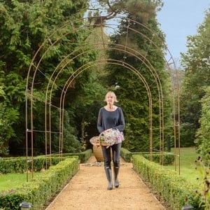 Harrod Linked Vintage Wire Arches In Natural Rust Will Be A Stunning Focal Point In The Garden With The Linked Garden Arches Creating A Beautiful Scen
