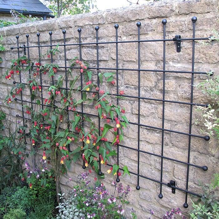 Metal garden trellis harrod horticultural for Metal garden trellis designs