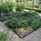 Aluminium Strawberry Cage with Heavy Duty Anti-Bird Netting