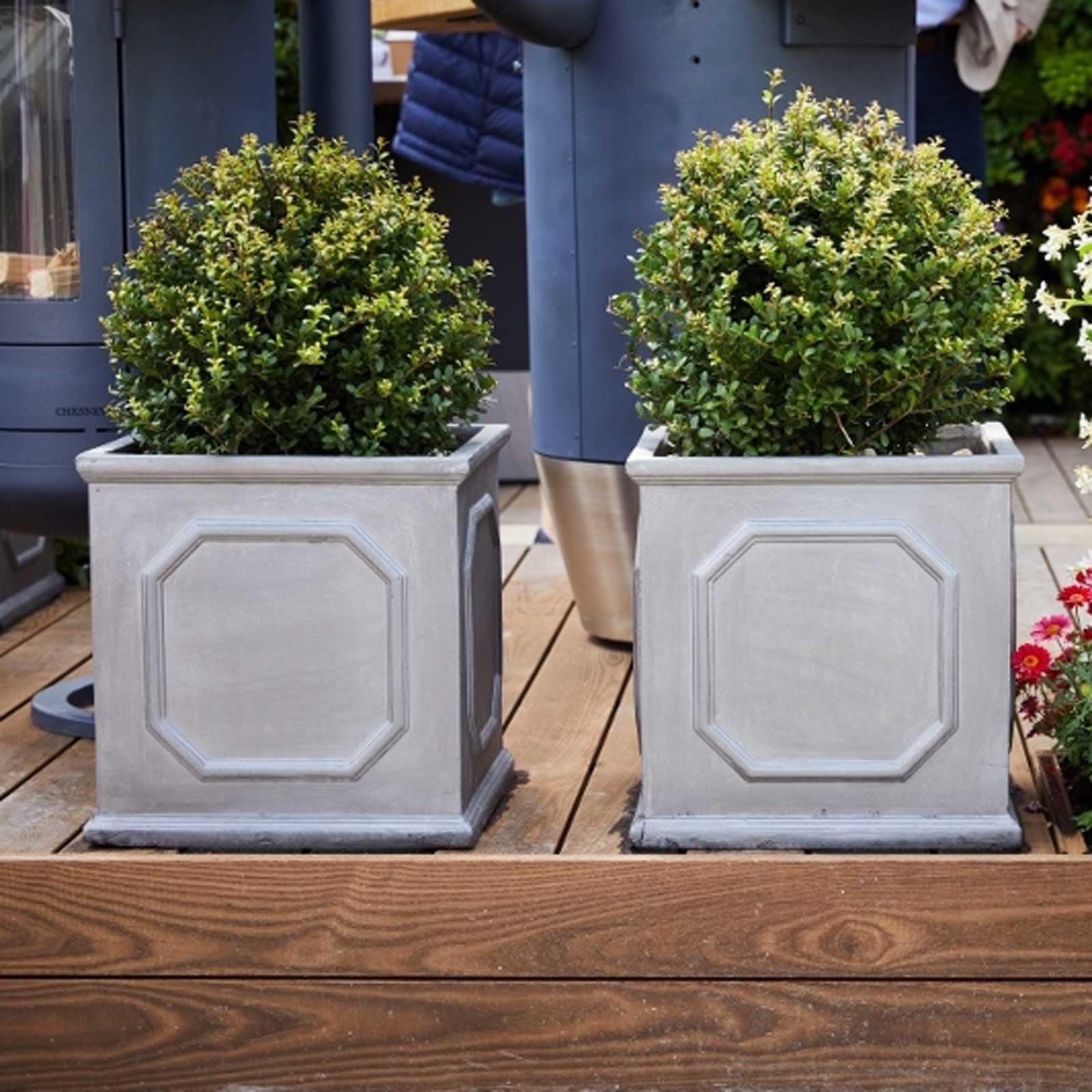 Clayfibre Chelsea Box Planters Harrod Horticultural