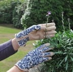 Ethel Jubilee Garden Gloves