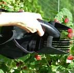 Folding Berry Picker