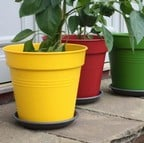 Giant Tomato Planter Pots