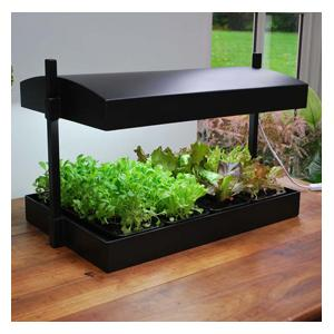 Grow Light Garden Watering Tray Insert
