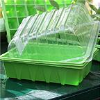 Half Tray Seed Trays (pack of 10)