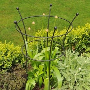 Harrod Trumpet Peony Plant Support - Matt Black