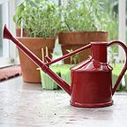 Haws Handy Indoor Watering Can