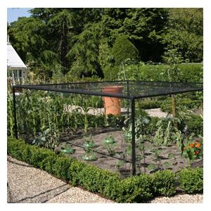 Heavy-Duty Steel Vegetable and Strawberry Cage