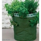 Herb Planters 2 Pack