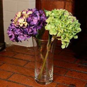 Large Hydrangea Stems (Set of 2) by Sia