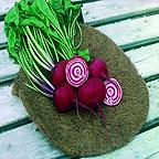 Organic Beetroot Chioggia Seeds