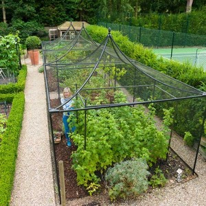 Peak Roof Decorative Steel Fruit Cage
