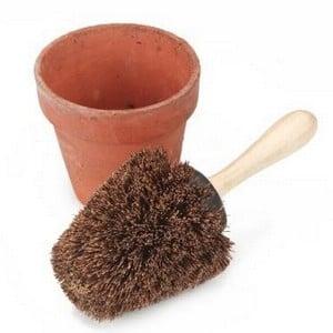 Pot Brush Harrod Horticultural Uk