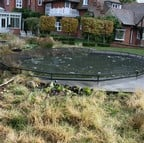 Raised Steel Pond Cover Large Irregular - Bespoke Product