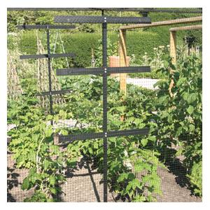 Raspberry Protection And Support Frame Harrod