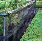 Snail Barrier Netting