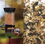Special Bird Feeder & Food Offer