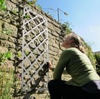 Superior Lattice Wall Trellis Panel