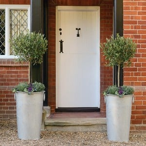 Tall Galvanised Zinc Planters