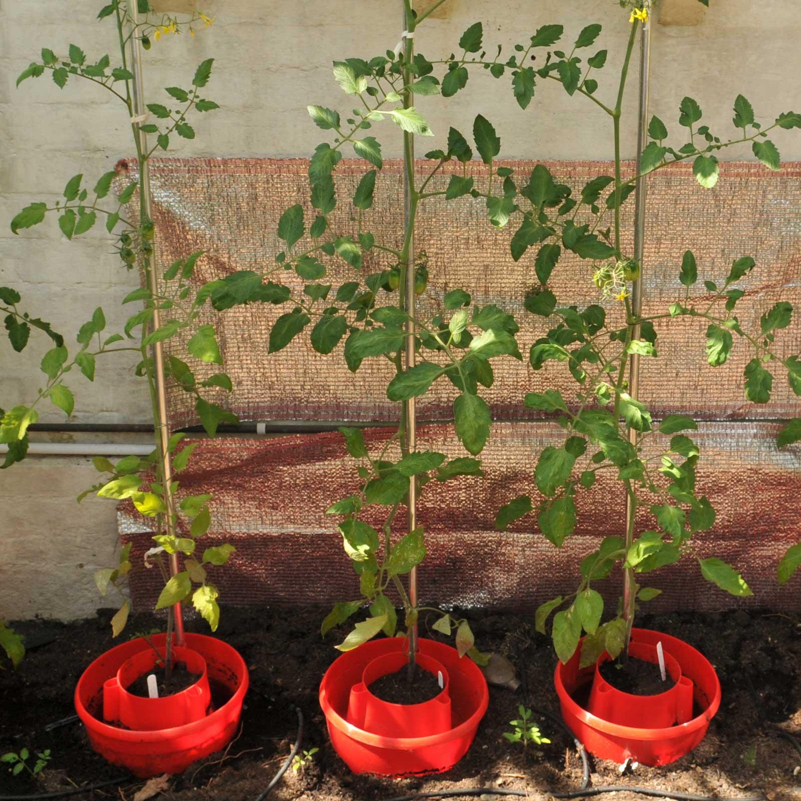 Harrod Horticultural (UK