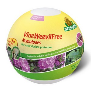 VineWeevilFree Nematodes