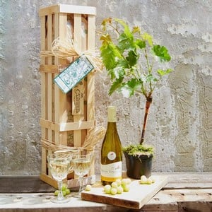 White Wine and Vine Gardeners Gift Set