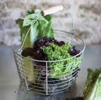 Wirework Salad Basket in Gooseberry