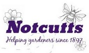 Notcutts - Oxford
