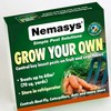 How to protect fruit and vegetables from pests using Nemasys Grow Your Own